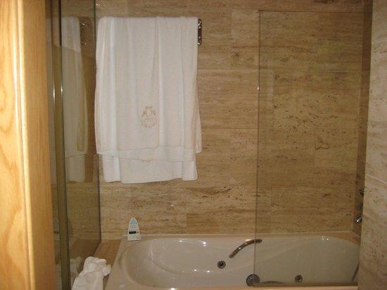 Pazo Los Escudos Hotel and Spa: BAÑO