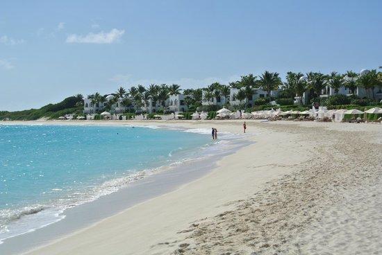 Cap Juluca:                   gorgeous crescent beach