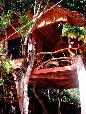 Viking Natures Resort: Our Tree Hut!