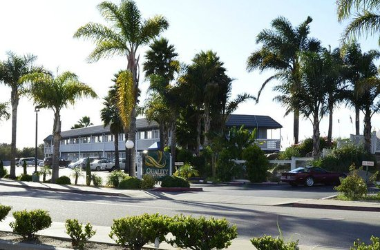 Picture Of Quality Inn Pismo Beach