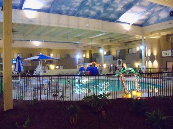 Holiday Inn Mansfield-Foxboro Area:                   Indoor salt water heated pool