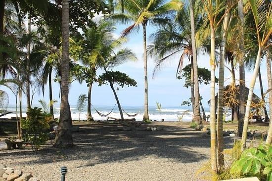 كلانديستينو بيتش ريزورت:                                                                         playa clandestino      