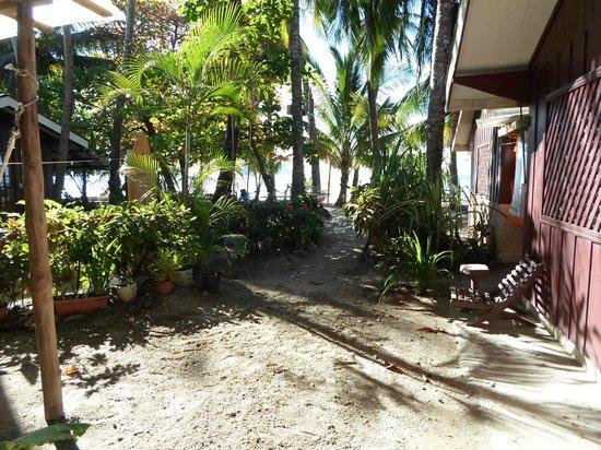 Hotel Casa Valeria Samara:                   Vue de notre chambre
