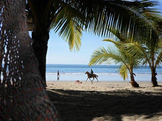 Casa Valeria:                   plage de l'hôtel
