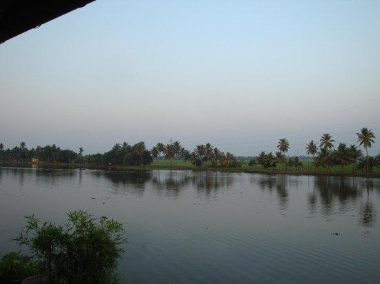 Citrus Retreats Alleppey: View from a room