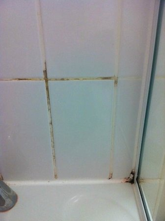 Holiday Inn Manchester-West:                   mould - room had been refurbished less than 2 weeks!