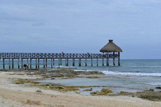 Mayan Palace Riviera Maya:                   La playa