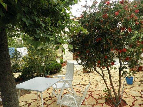 SD House: Garden