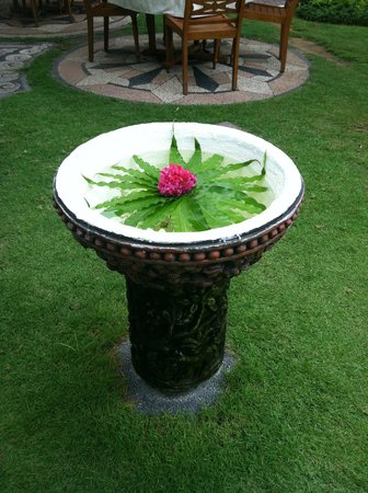 Masa Inn:                   Flowers in the garden by the tables