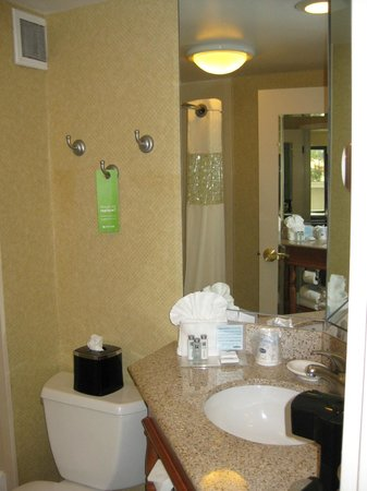 Hampton Inn Tampa International Airport / Westshore: Bathroom