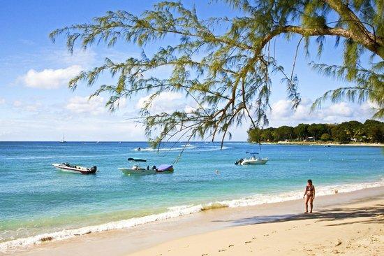 Beach View:                                     Beach close to Paynes Bay                                 