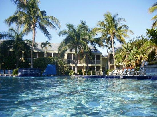 BEST WESTERN Key Ambassador Resort Inn:                   Pool