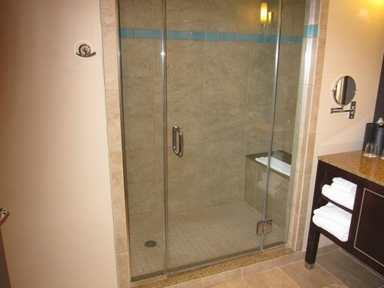 Harrah's Resort Atlantic City:                   walk in shower