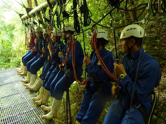 Waitomo Adventures - Lost World 4 Hr Option:                   abseilling group setup