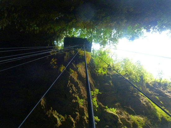Waitomo Adventures - Lost World 4 Hr Option:                   abseilling looking up