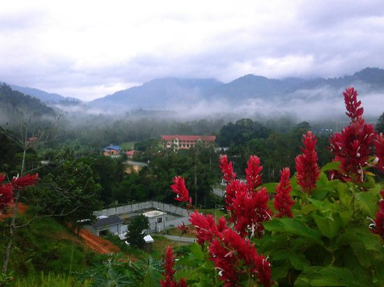 Janda Baik, มาเลเซีย: Overlooking mountains and winding road up the hotel