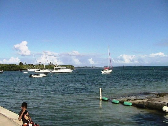 Blue Bahia Seafood :                   View of inlet