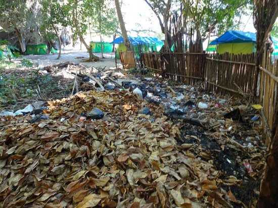 Trang Province, Thailand:                   more litter
