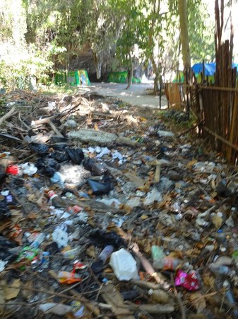 Trang Province, Thailand:                   litter