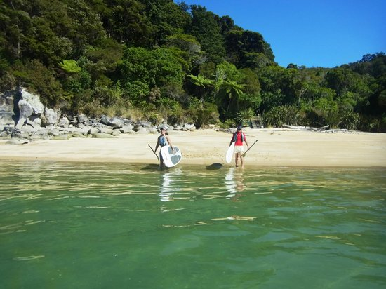 Abel Tasman Paddleboarding: Setting out from Watering Cove