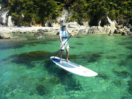 Abel Tasman Paddleboarding: Bark Bay