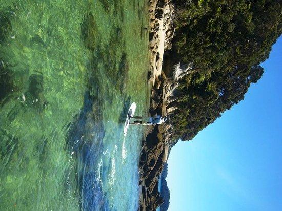 Abel Tasman Paddleboarding: Beautiful Tonga Island marine reserve