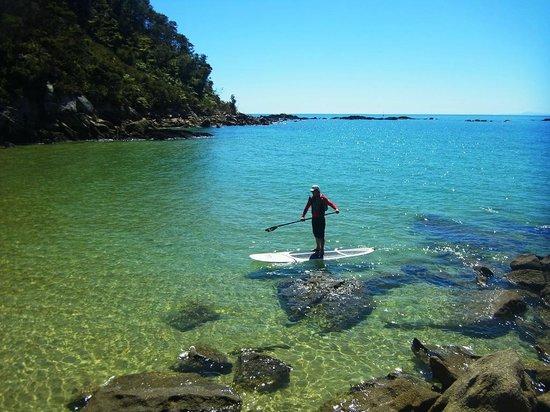 Abel Tasman Paddleboarding: Abel Tasman National Park