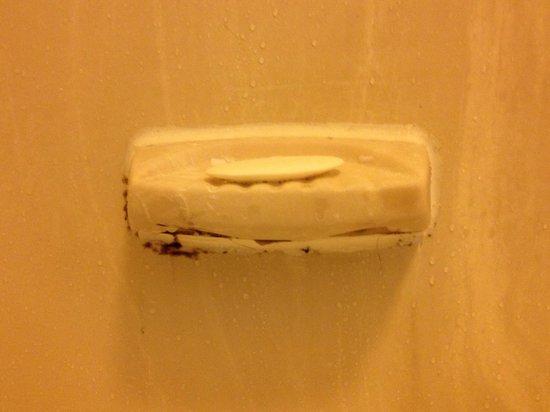 Quality Inn Miami Airport:                   no lavan bien los baños