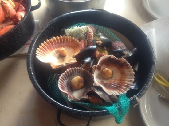 Joe's Crab Shack: Crab Pot