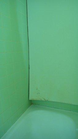 Perkasa Hotel: Wall at the bathtub area