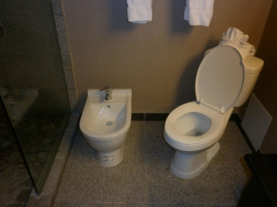 Causeway Bay Lansing Hotel: Even had a bidet