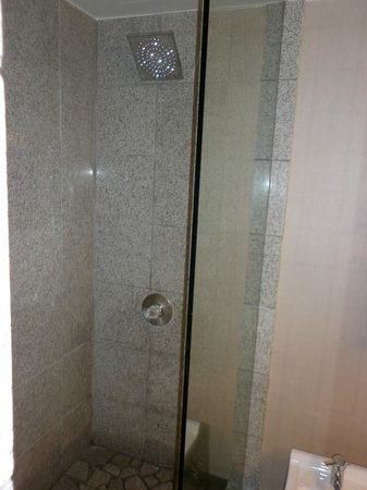 Causeway Bay Lansing Hotel: Very nice walk in shower