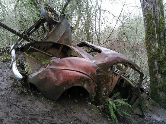Minto-Brown Island Park :                                     Find the abandoned vintage car.