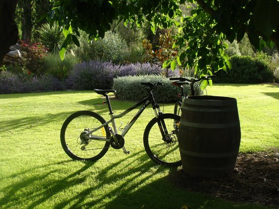 Burn Cottage Retreat: Wine barrel bicycle rack with guest bicycles