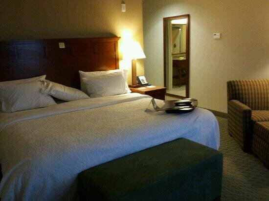 Hampton Inn & Suites Salem:                                                       King bedroom