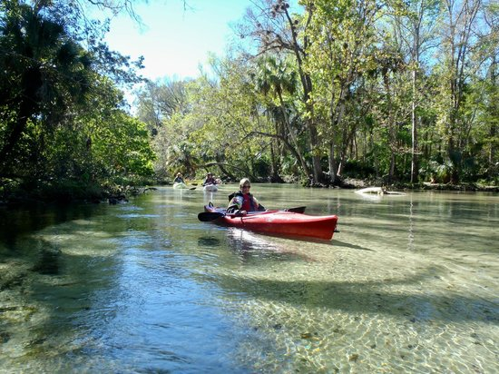 Central Florida Nature Adventures:                                     Marge on Rock Cut Springs