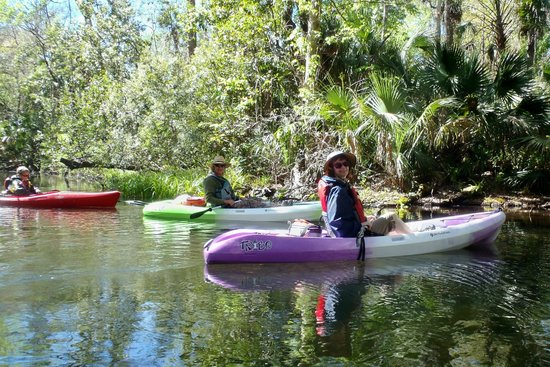 Central Florida Nature Adventures:                                     Inger and Kenny at lunch stop