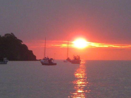 Cabinas Coco Alegre: sunset