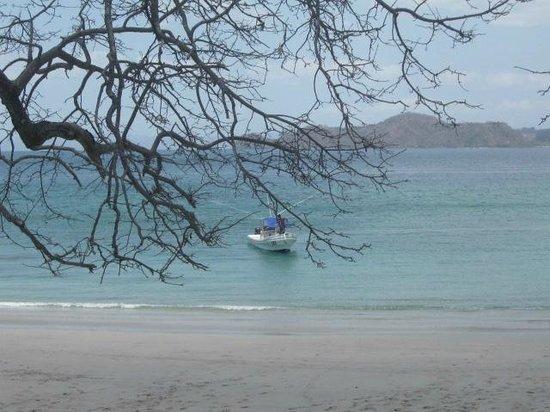 Cabinas Coco Alegre: beach