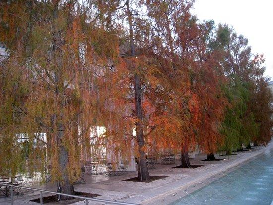The Getty Center:                   Natureza e cimento...