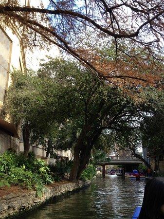 聖安東尼奧河照片