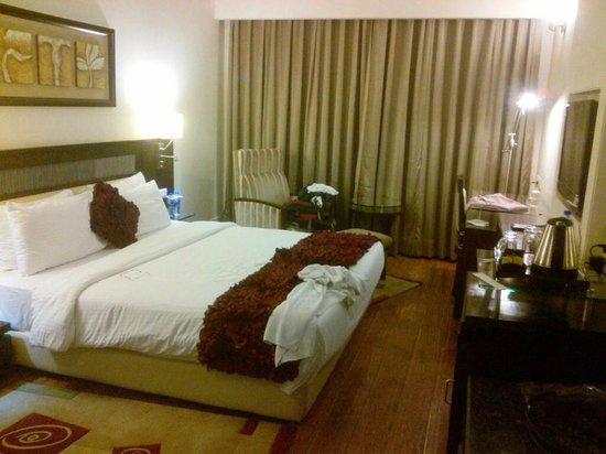 Chandigarh Ashok:                   Room