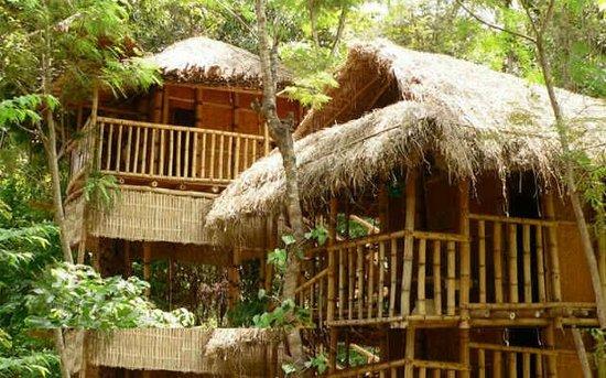 Kalindi River Resort Mananthavady Ranch Reviews Photos Rate Comparison Tripadvisor