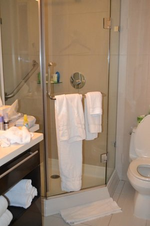 Staybridge Suites Times Square - New York City:                   Glass shower door