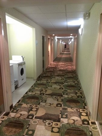 Holiday Inn Riverton - Convention Center:                   hall to the room, 2nd floor