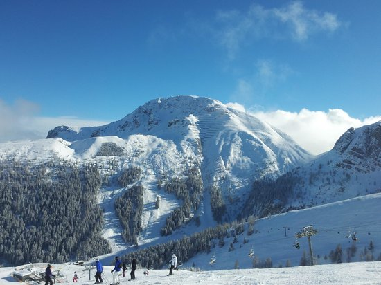 Axamer Lizum Ski Resort :                   a pic taken on a slope