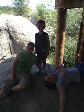 达拉斯动物园照片