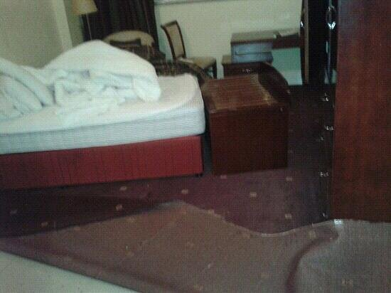 The Regency Hotel Dublin:                   AVOID!! this is what we got when opened door to our room! 2 rooms and very hel
