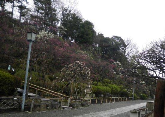 Ikegami Baien