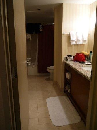 Omni Chicago Hotel:                   Bath